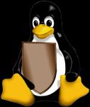 Tener traccia dei cambiamenti ai files su linux, cambiamenti file su linux, logger modifiche a file e cartelle su linux